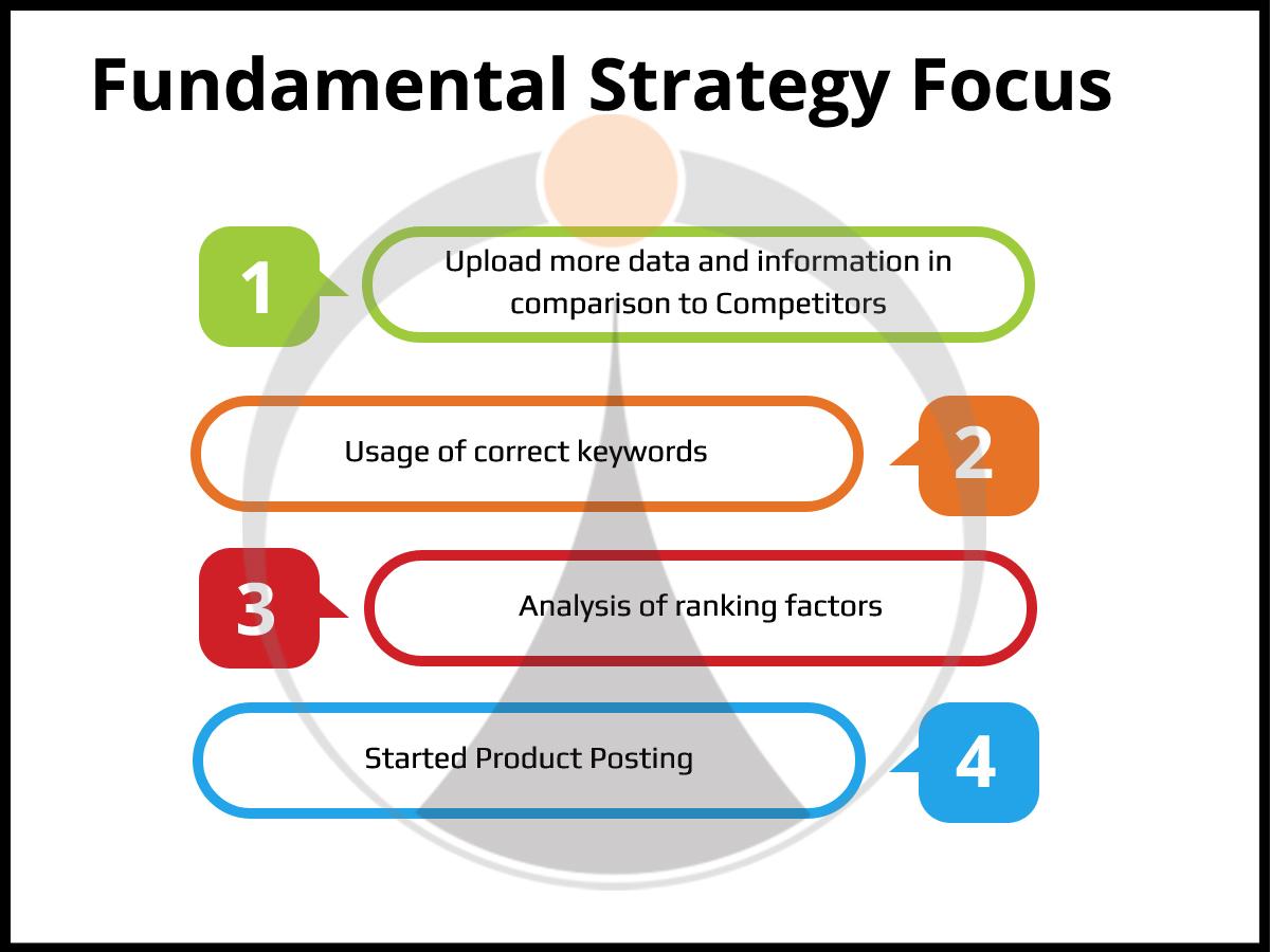 Fundamental Strategy Focus